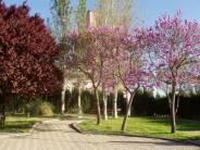 Parque Central en Villalba