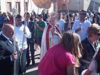 Mayordomo, cofrades, Palio, Custodia y procesión